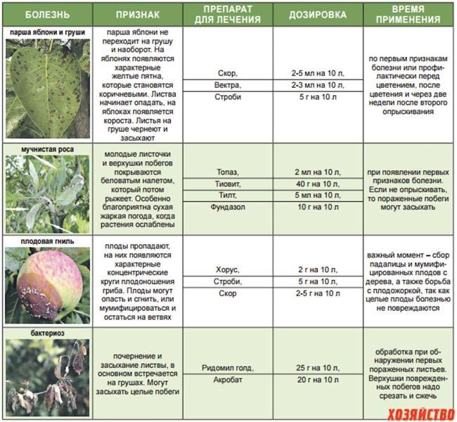 Препараты против вредителей