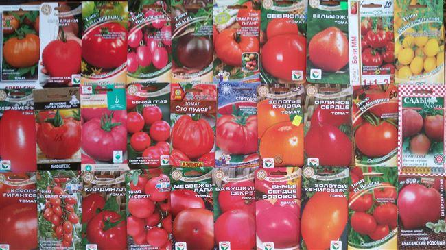Описание и характеристика томата Абаканский розовый, отзывы, фото