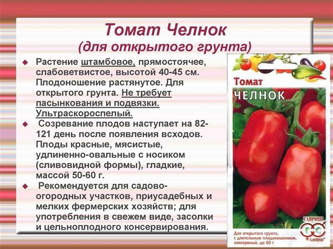 Особенности выращивания помидоров Акулина, посадка и уход