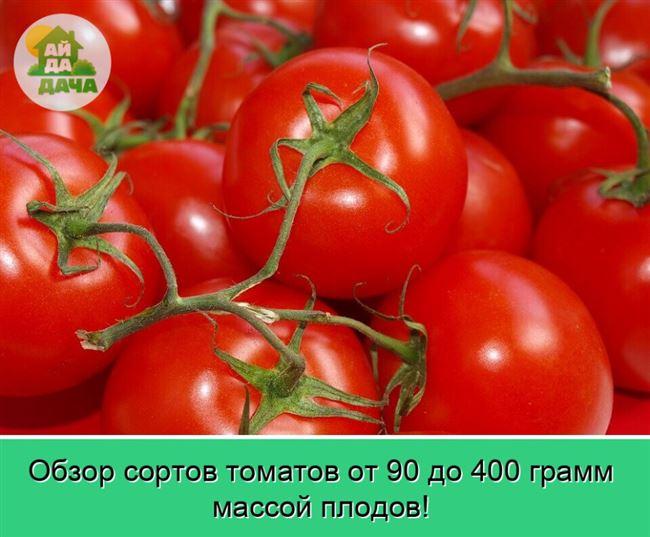 Агротехника выращивания