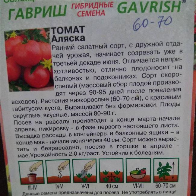 Посадка томатов Аляска