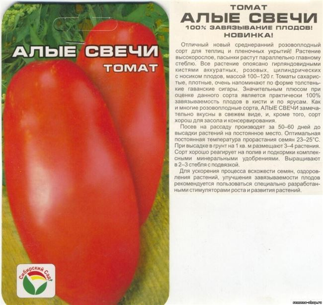Описание сорта томата Невский, его характеристика и уход