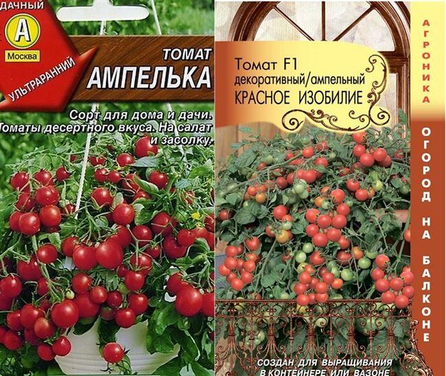 Особенности посадки рассады и ухода за ампельными помидорами