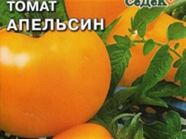 Описание и характеристика томата апельсин