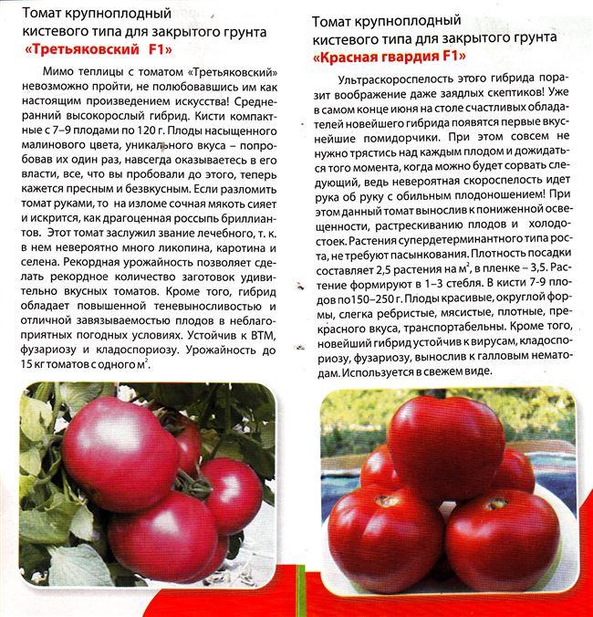 Рейтинг сортов по характеристикам и размерам плодов