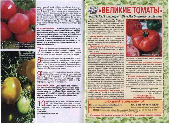 Выращивание и агротехника
