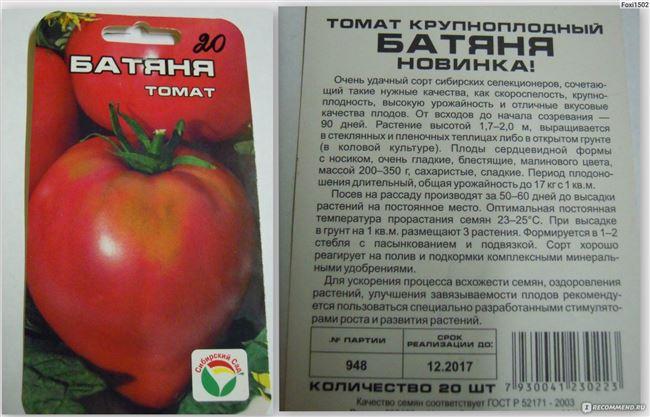 Видео: томат Батяня