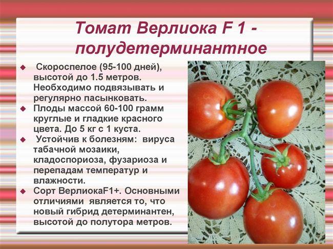 Уход за детерминантными томатами