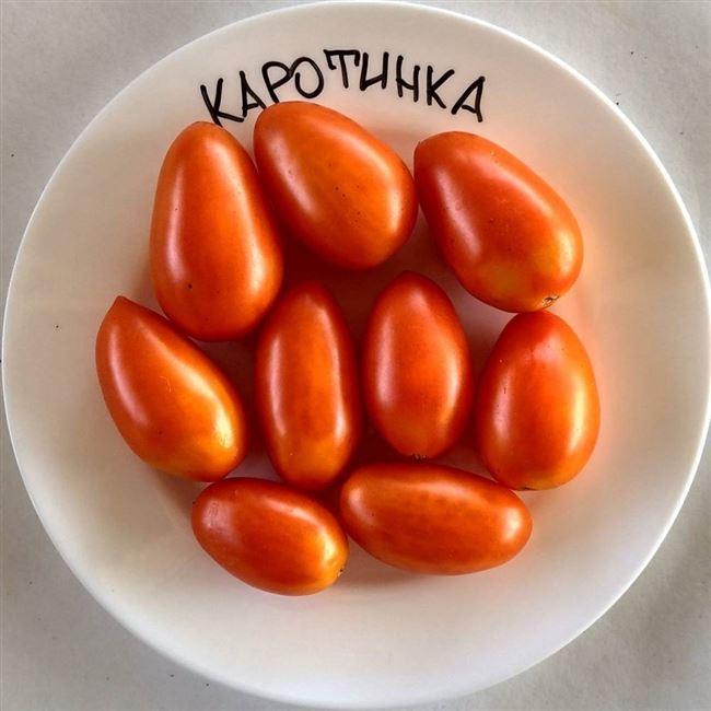 семена томат Кустовой Каротинка 0,1 г