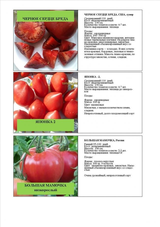 Основные качества плодов, урожайность