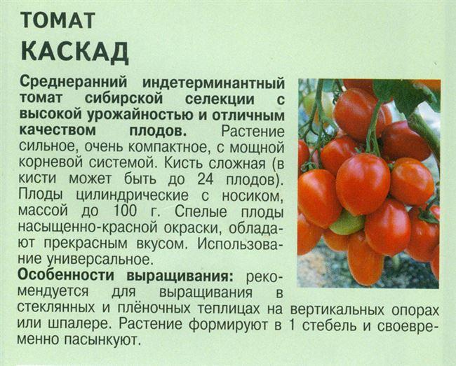 Описание и характеристика томата Каскад, отзывы, фото