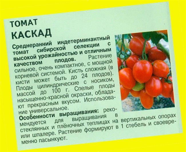 Техника ухода за томатом Каскад