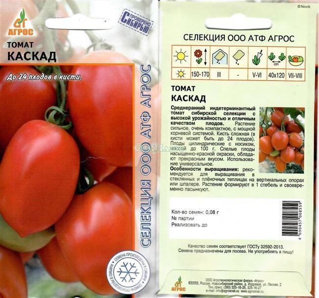 Описание и характеристика сорта томата Клондайк, отзывы, фото