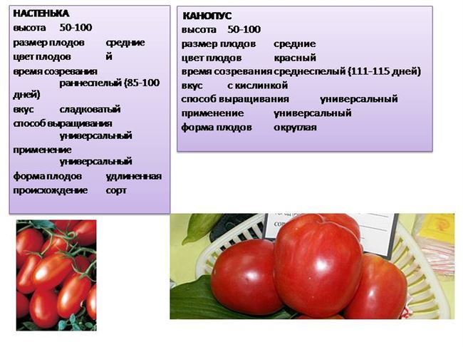 Основные качества плодов