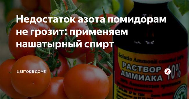 Видео: нашатырный спирт — супер удобрение для томатов