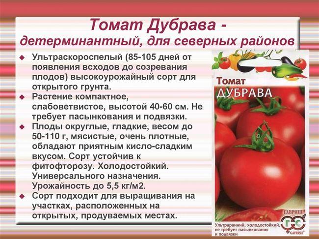 Формирование низкорослых томатов, подвязывание и защита от болезней, видео