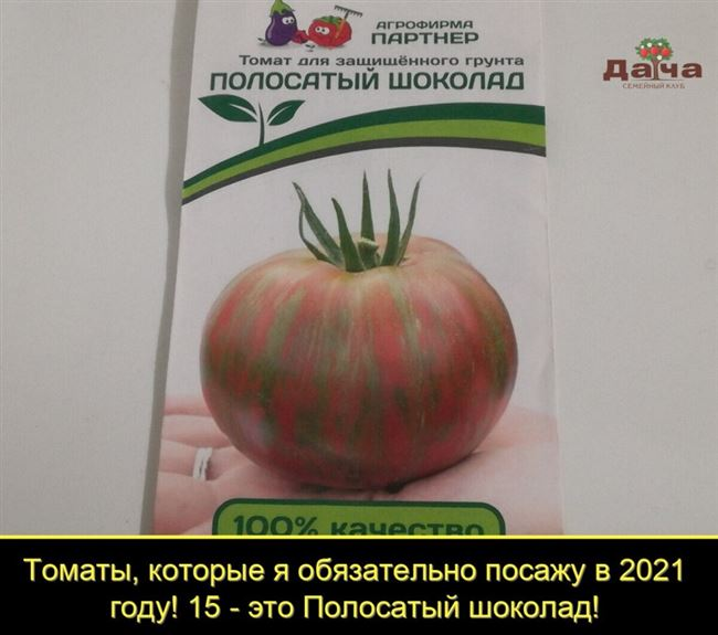 Домашний помидор от ангелины. Отзывы о магазине