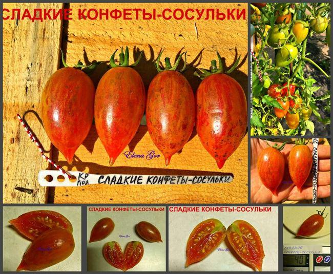 Урожайность томата Конфеты Сладкие сосульки