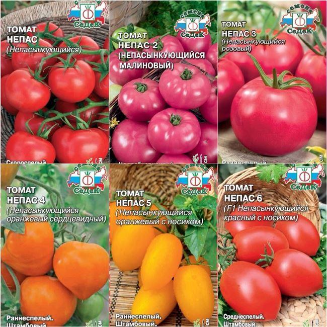Описание разновидностей сорта Непас, их характеристики, регион выращивания, отличие друг от друга