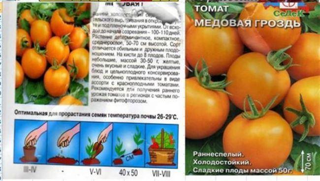 Посадка и уход за комнатными томатами