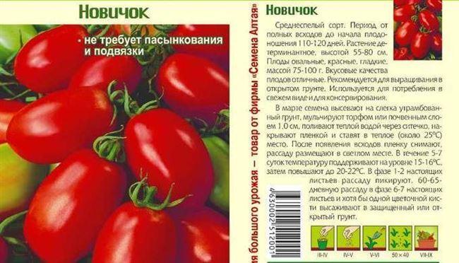 Выращивание рассады томата Новичок