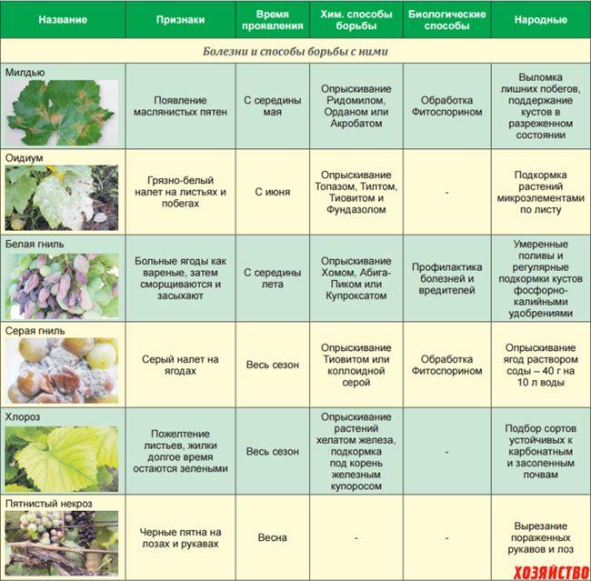 Вегетационный период и транспортировка