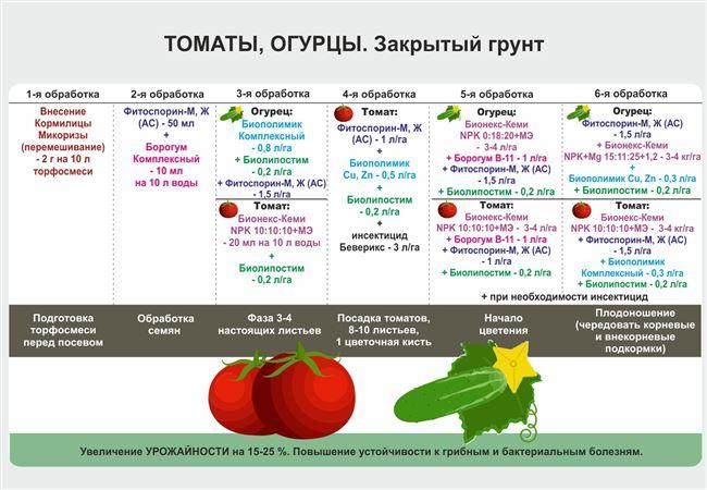 Создание благоприятного климата для томатов в теплице