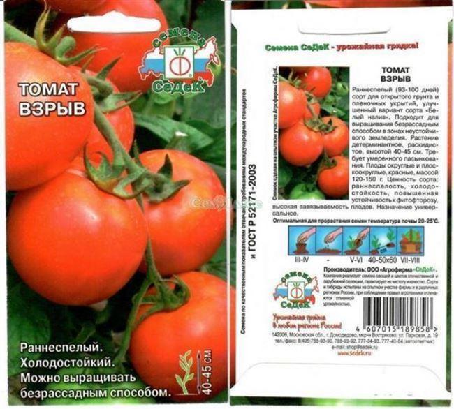 Урожайность томата Олеся