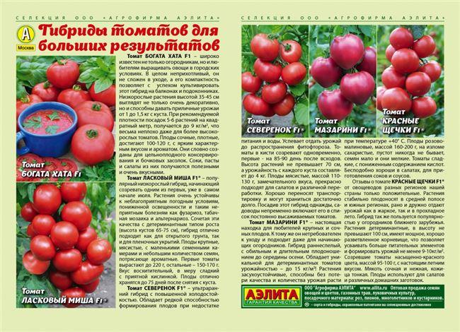 Особенности агротехники и отзывы о томате