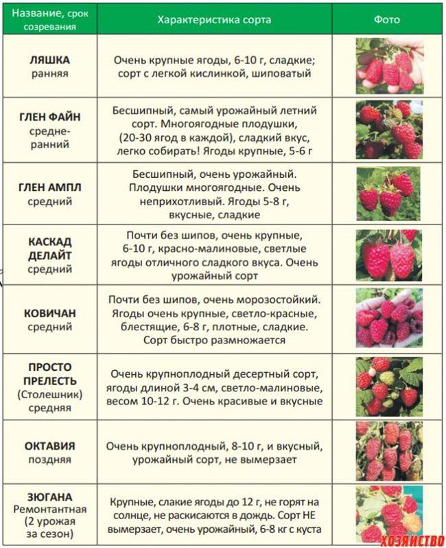 Период после цветения