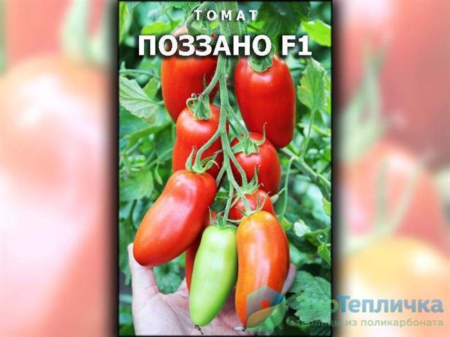Видеоотзывы о помидорах Поззано F1