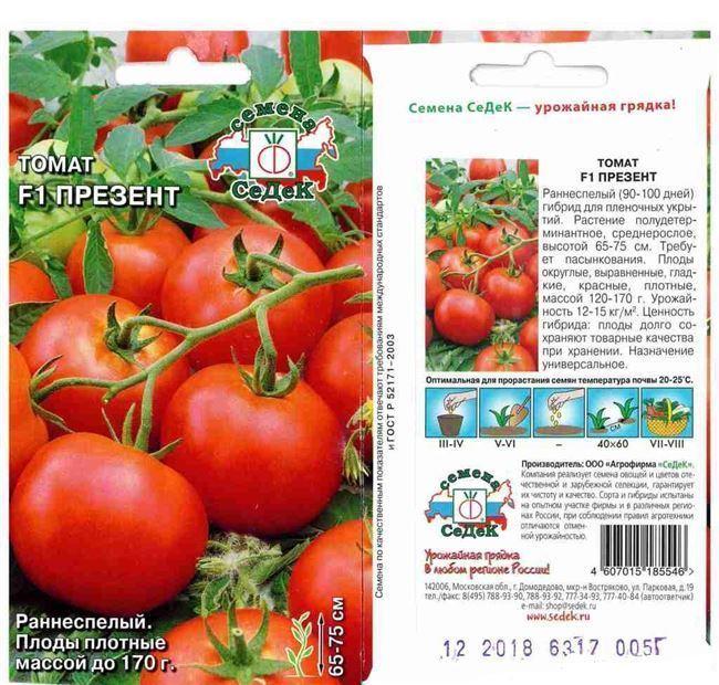 Описание и характеристика томата Летний сад F1, отзывы, фото