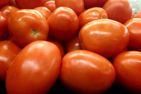 Томат Аделина: характеристика, особенности выращивания