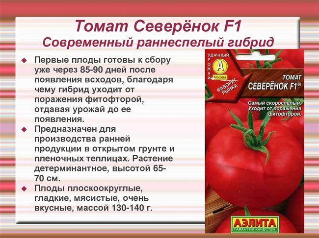 Характеристика и описание сорта томата Алешка F1 и нюансы агротехники