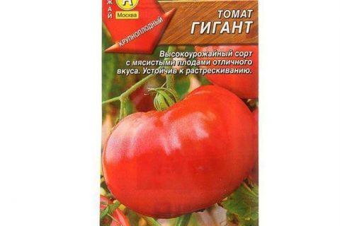 Томат Алтайская заря: отзывы об урожайности помидоров, описание сорта, фото куста