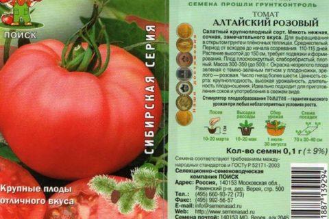 Томат Алтайский розовый: описание и характеристики, особенности посадки и выращивания, болезни и вредители, достоинства и недостатки