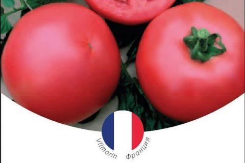 томаты арамис f 1 созревание среднеранний группа гибрид предназначение для приготовления свежих летних салатов и консервирования выращивание теплица цвет красная масса гр 120 130 г первое соцветие над 8 9 листом вкусовые качества отличные