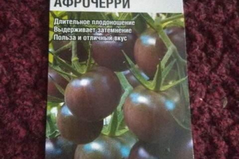 Сорт томата Афрочерри от АФ