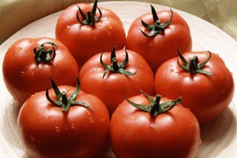 Насіння томату Бодерин F1 \ Boderin F1 Syngenta 500 насінин, ціна 1232 грн., купити в Харкові — Prom.ua (ID#25609729)