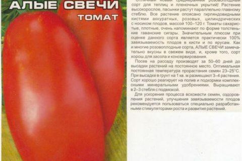 Томат Бокари — раннеспелый сорт, от всходов.. | Семена ВНИИССОК | ВКонтакте