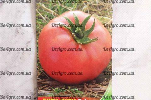 Описание, характеристика, посев на рассаду, подкормка, урожайность, фото, видео и самые распространенные болезни томатов сорт а «Буги Вуги F1». Раннеспелый и высокоурожайный гибрид универсального назн