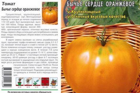 Томат Бычье сердце оранжевое: характеристика и описание сорта, фото и отзывы об урожайности помидоров из семян