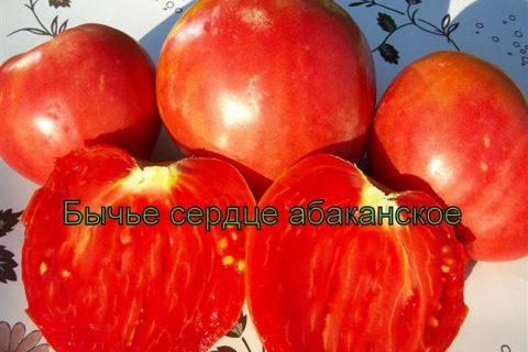 Томат Бычье сердце Персиковое семена — низкая цена, описание, отзывы, продажа