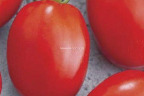 Томат Венета 0,2г   Семена овощей. Семена овощей
