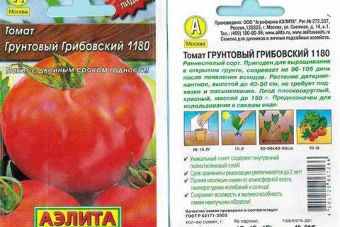 Томат Грунтовый грибовский: характеристика и описание сорта с фото