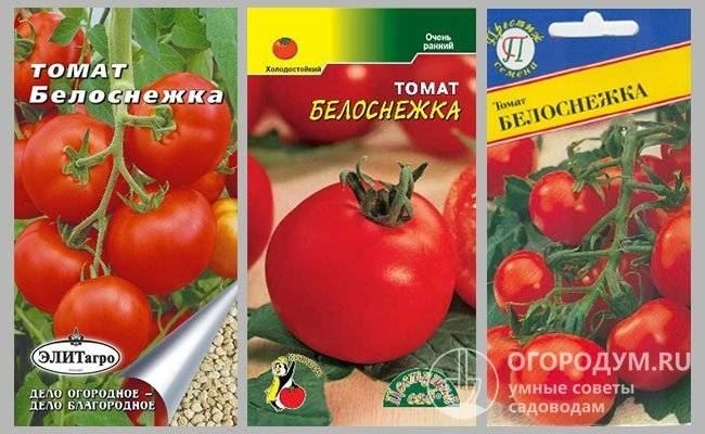 Характеристика сорта томатов Золушка, особенности выращивания