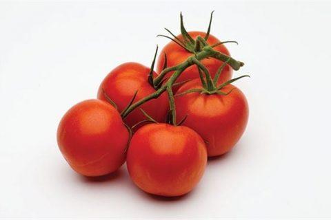 О томате Семко: описание сорта томата, характеристики помидоров, посев