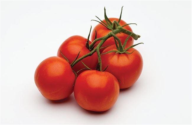 Комплис F1 семена томата индетерминантного (De Ruiter Seeds / Де Ройтер Сидс)