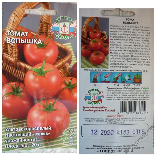 Получивший массу восторженных отзывов томат — Коралл: описание и характеристика сорта