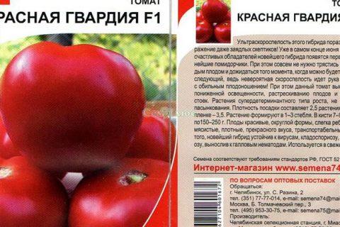 Томат Красная гвардия: отзывы огородников со стажем, преимущества и недостатки сорта, советы по уходу